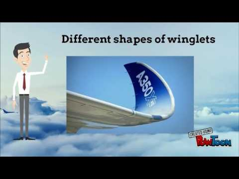 Optimisation des winglets d'un avion